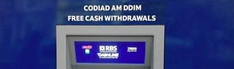 cash-erect