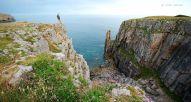 Klify Pembrokeshire