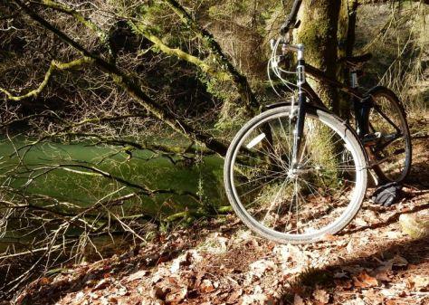 Walia rowerem