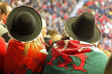 Two Welsh Dragons by zoonabar/flickr