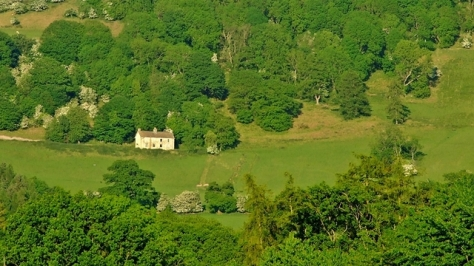 Dom na zielonym wzgórzu