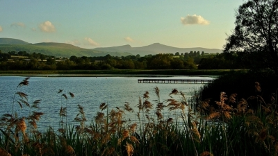 Llangorse Lake. W tle Pen y Fan