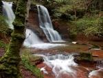 Wodospad Czarownic w Talgarth