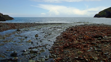 Plaża w Cwmtudu