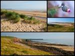 1 dzień w południowym Pembrokeshire