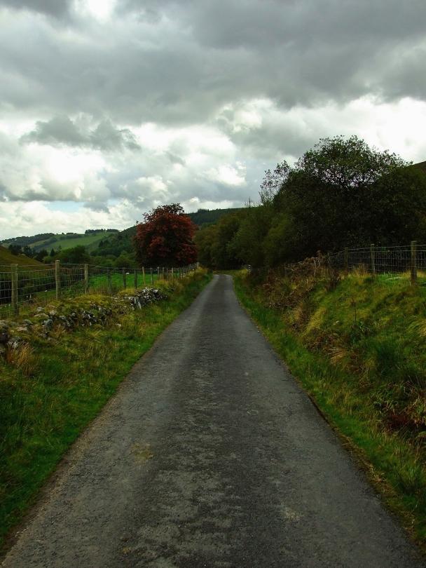 Polna droga gdzieś w okolicach Neuadd