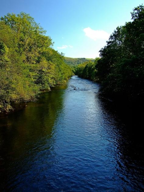 Rzeka Tywi
