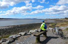 Trasa rowerowa do Llanelli niedaleko 'Wetlands'. Autor: Smok Walijski.