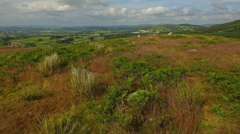 Widok na dolinę rzeki Tywi z Garn Goch