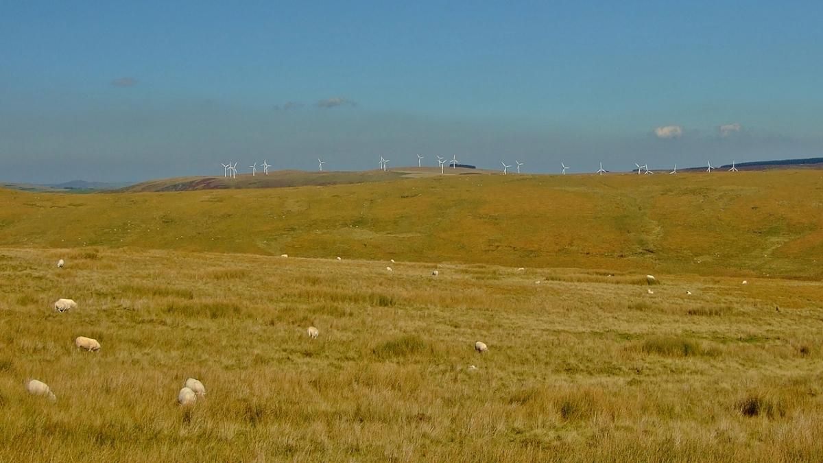Bryn Titli Wind Farm